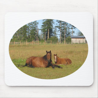 Horses: Mama and Baby Horse Lying Down Mouse Pad