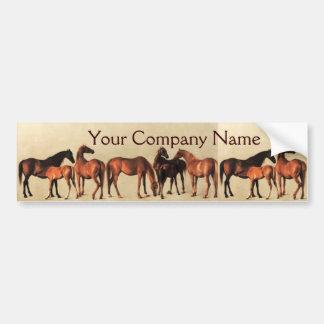 HORSES /MARES AND FOALS Horse Breeder Bumper Sticker