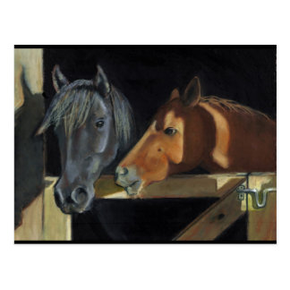 Horses Meeting At Gate: Art In Oil Pastel Postcard