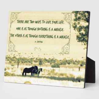 Horses - Miracle Quote Plaque