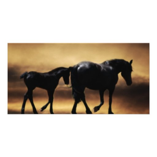 Horses mom and I Photo Greeting Card