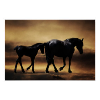 Horses mom and I Poster