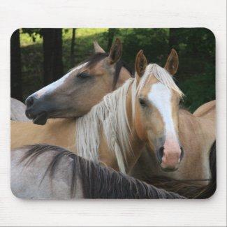 Horses mouse pad mousepad