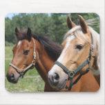 Horses Mousepads