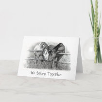 HORSES NUZZLING: PENCIL ART: VALENTINE HOLIDAY CARD