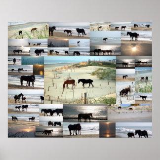 Horses of Carova Posters