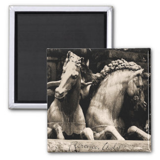 Horses of Florence, Italy Refrigerator Magnets