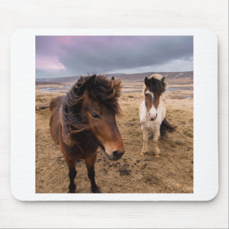 Horses of Iceland Mouse Pad