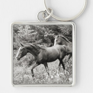 Horses of Liberty i-phone cases and gifts Keychain