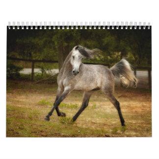 Horses of the South Calendar
