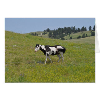 Horses of the West by Janz Print Number 1 Notecard Greeting Card