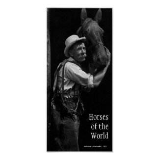 Horses of the World Poster