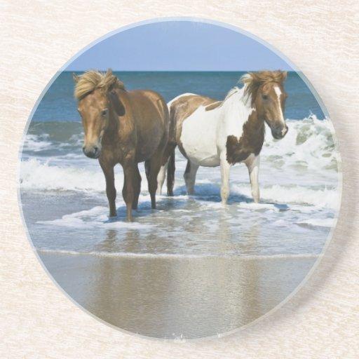 Horses on a Beach Coasters