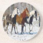 Horses on a Farm Drink Coaster
