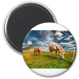 Horses On A Field Magnet