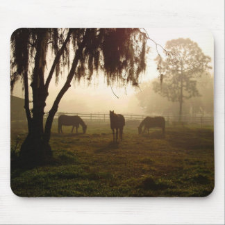 Horses on a Misty Morning Mouse Pad