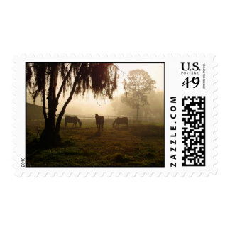 Horses on a Misty Morning Stamp