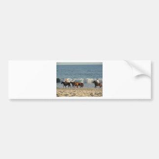 Horses on Beach Car Bumper Sticker