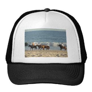 Horses on Beach Hats