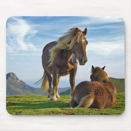 Horses on Bianditz mountain in Navarre Spain Mouse Pad