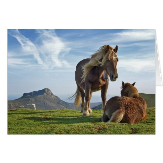 Horses on Bianditz Mountain, Spain Greeting Card