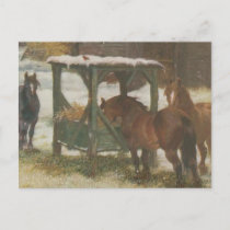 Horses on Christmas Day Holiday Postcard