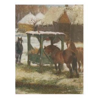 Horses on Christmas Day Postcard