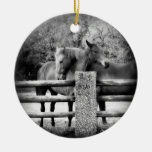 Horses on Farm Field Together Christmas Ornament