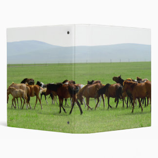 Horses on Grassland - Landscape Photograph Binder