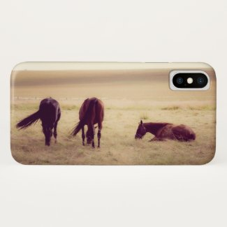Horses on pasture 002 iPhone x case