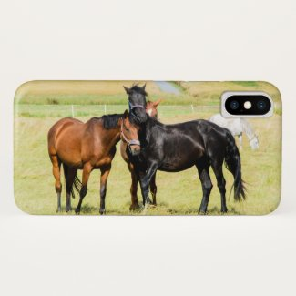 Horses on pasture 003 iPhone x case
