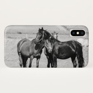 Horses on pasture 004 iPhone x case