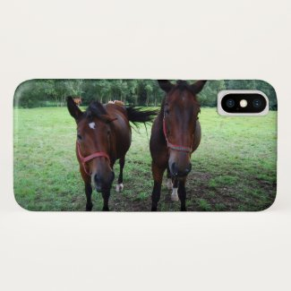 Horses on pasture iPhone x case