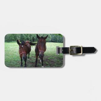 Horses on pasture luggage tags