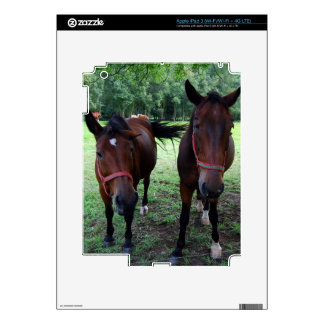 Horses on pasture decals for iPad 3