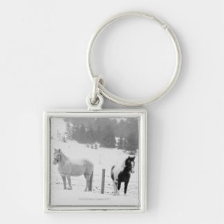 Horses on ranch key chains