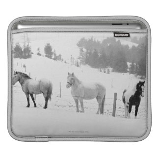 Horses on ranch sleeve for iPads