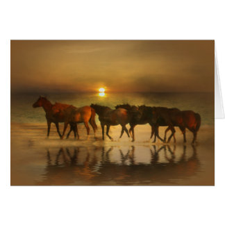 Horses on the Beach Blank Note Cards