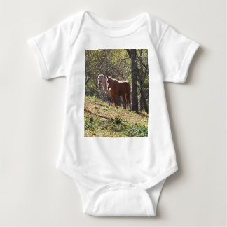 Horses on the farm baby bodysuit