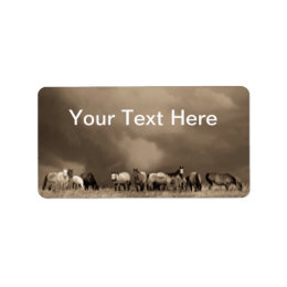 Horses on the Prairie labels