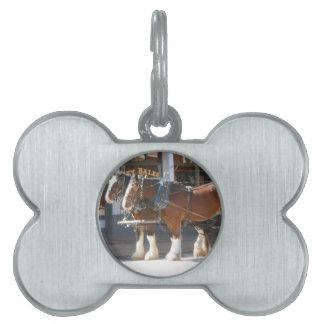 Horses Pet Name Tag