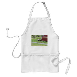 Horses Photo Adult Apron