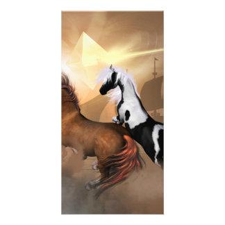 Horses Photo Card
