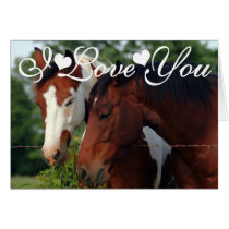 Horses Photograph I Love You Card