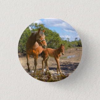 Horses Pinback Button
