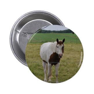 Horses Pins
