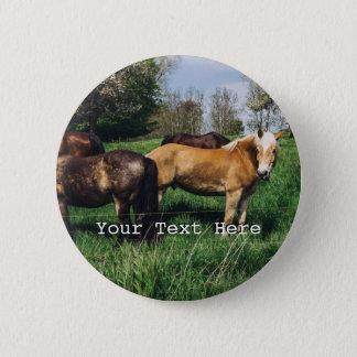 Horses Ponies In Spring Pasture Pinback Button