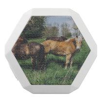 Horses Ponies In Spring Pasture White Bluetooth Speaker