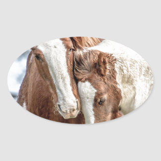 Horses/Ponies Oval Sticker