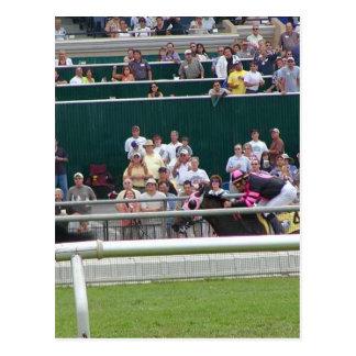 Horses Racing Tracks Postcard